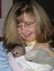 Capuchin maymunları mevcut