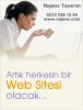 Web sitelerinizi yapalım yönetim panelli 338 12 40
