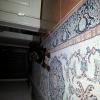 3 Aylık Macar Rottweiler Erkek