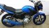 150 lilik tiger motor mavi 2013 model