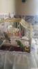 Ctn muhabbet kuş üretimi