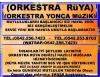 Denizlideki orkestralar arayanlar nazillideki orkestralar