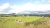 Kiralık çiftlik ve arazi