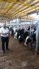 Serkan et tarım ve hayvancılık