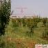 Antalya da sahibinden sat�l�k ticari arsa
