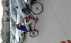 Harley davidson bisiklet