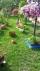 Sahibinden satılık acil lüxs bahçeli daire