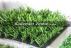 Yapay rulo çim, nurteks çim halı